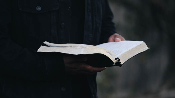 Learning to Trust (and Love) the Bible